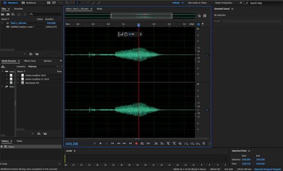 Adobe Audition Ekran Görüntüleri - 4