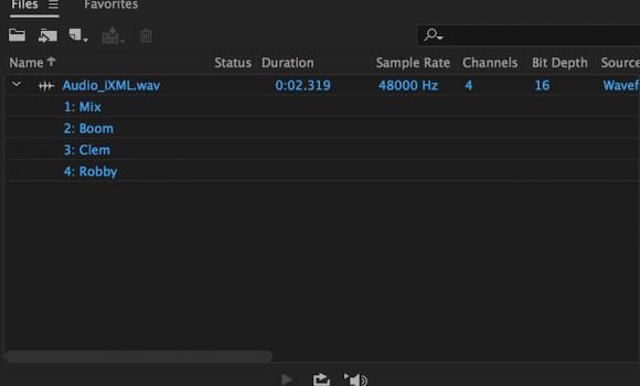 Adobe Audition Ekran Görüntüleri - 5