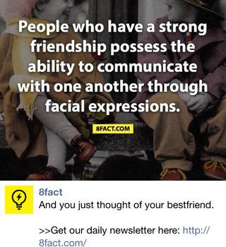 8Fact Ekran Görüntüleri - 3