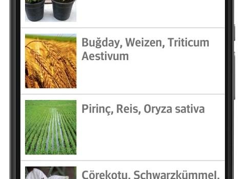 Alternatif Tıp Şifalı Bitkiler Ekran Görüntüleri - 3