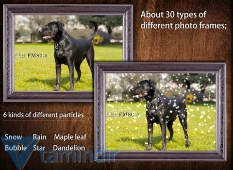 Animate Photo Free Ekran Görüntüleri - 5