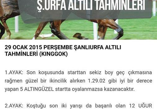 Banko Tahminler At Yarışı Ekran Görüntüleri - 2