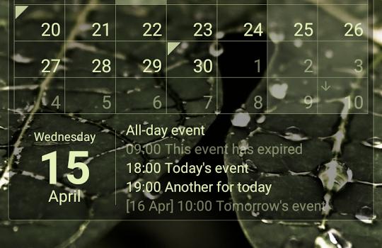 Calendar Widget Ekran Görüntüleri - 3