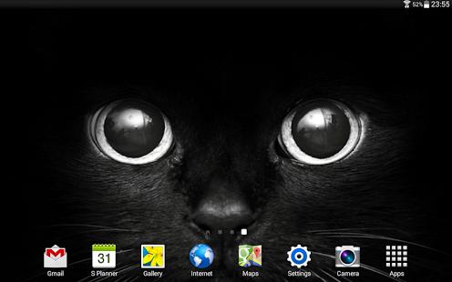 Cats Wallpapers HQ Ekran Görüntüleri - 3