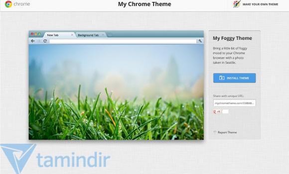Chrome Temam Ekran Görüntüleri - 1