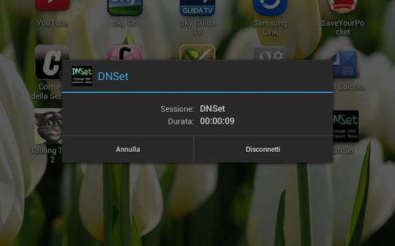 DNSet Ekran Görüntüleri - 2