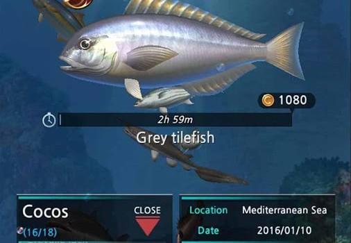 Fishing Hook Ekran Görüntüleri - 2