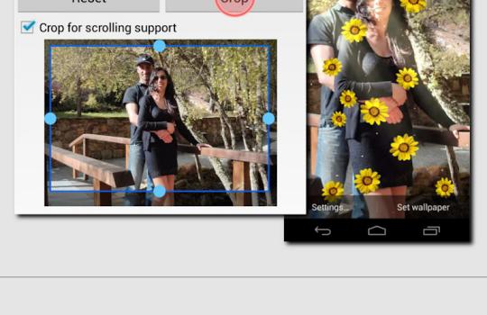 Flower Live Wallpaper Ekran Görüntüleri - 4
