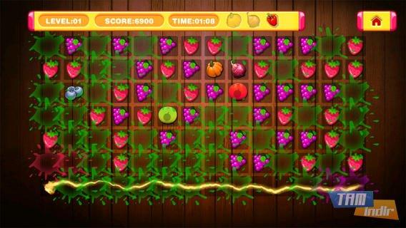 Fruit Crush Ekran Görüntüleri - 4