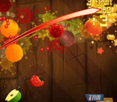 Fruit Ninja Lite Ekran Görüntüleri - 2