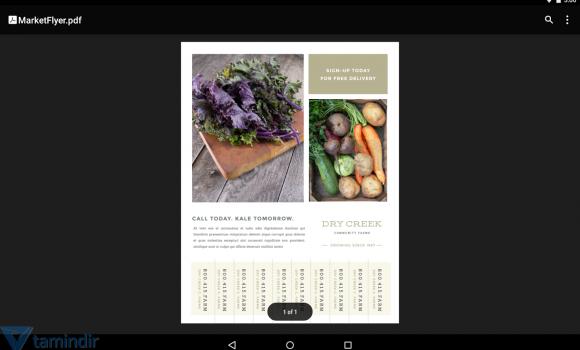 Google PDF Viewer Ekran Görüntüleri - 2