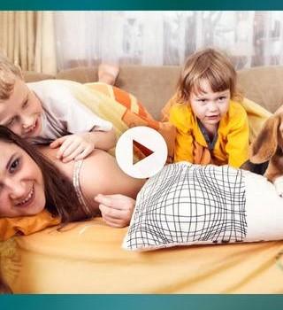 InstaVideo+ Pro Ekran Görüntüleri - 1