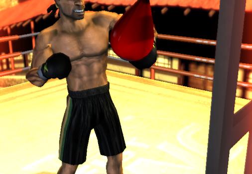 Iron Fist Boxing Ekran Görüntüleri - 2