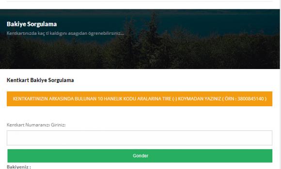 İzmir Gelişmiş Ulaşım Sistemi Ekran Görüntüleri - 5