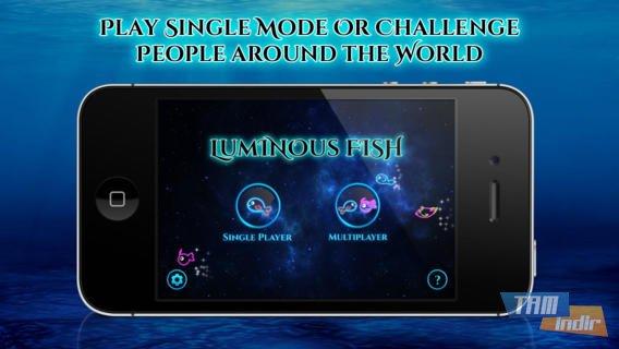 Luminous Fish Ekran Görüntüleri - 2