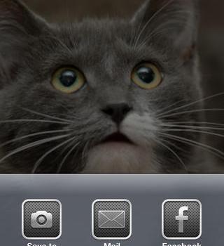 My Talking Pet Ekran Görüntüleri - 3