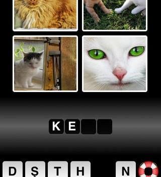 Ne Ki Bu? Ekran Görüntüleri - 3