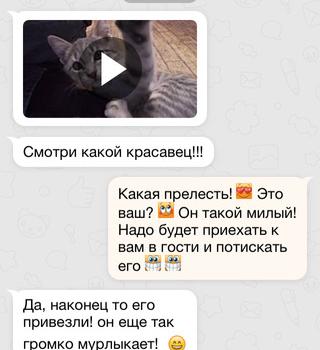 Odnoklassniki Ekran Görüntüleri - 3