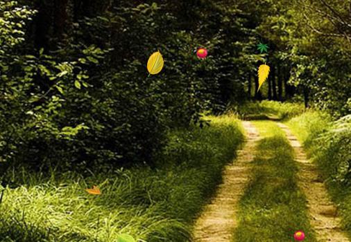 Orman Canlı Duvar Kağıdı Ekran Görüntüleri - 2