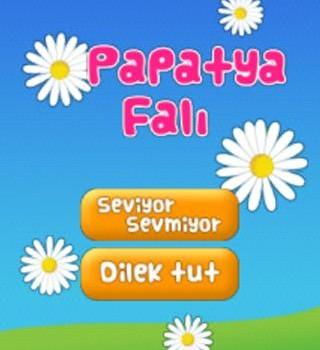 Papatya Falı Ekran Görüntüleri - 3