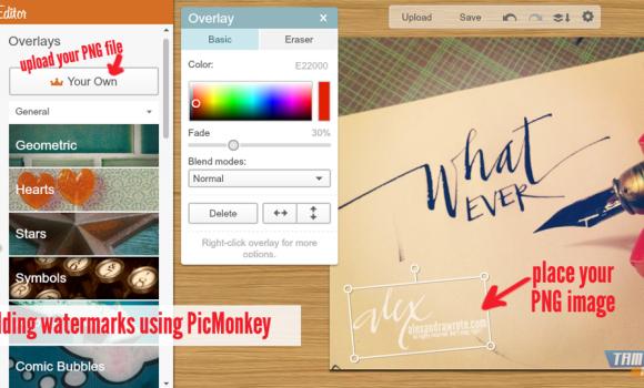 PicMonkey Ekran Görüntüleri - 1