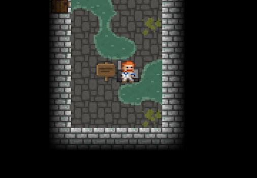 Pixel Dungeon Ekran Görüntüleri - 2