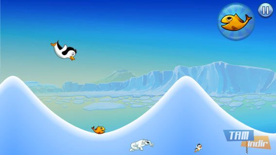 Racing Penguin, Flying Free Ekran Görüntüleri - 5