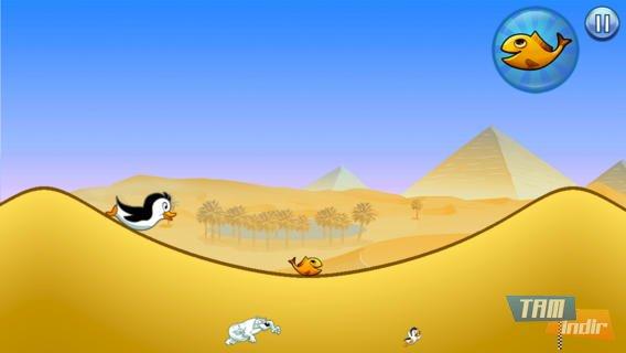 Racing Penguin, Flying Free Ekran Görüntüleri - 4