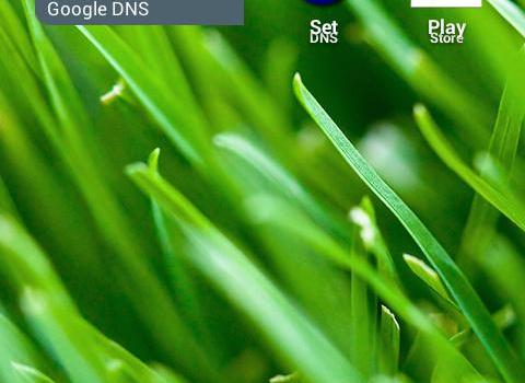 Set DNS Ekran Görüntüleri - 1