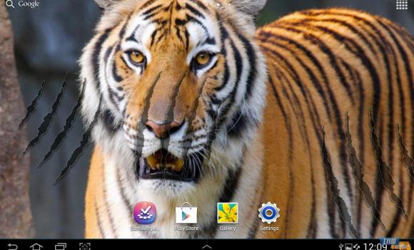 Tiger Live Wallpaper Ekran Görüntüleri - 6