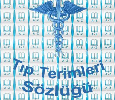 Tıp Terimleri Sözlüğü Ekran Görüntüleri - 5