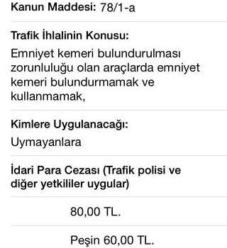 Trafik Cezaları Ekran Görüntüleri - 3