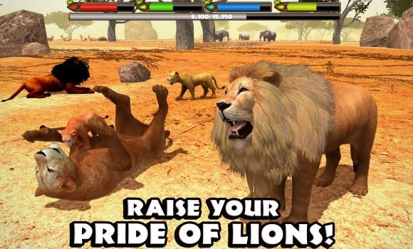 Ultimate Lion Simulator Ekran Görüntüleri - 3