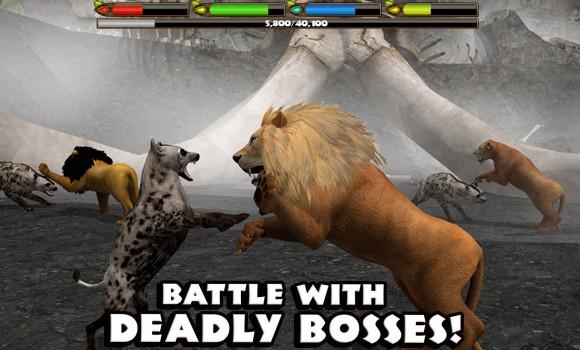Ultimate Lion Simulator Ekran Görüntüleri - 2