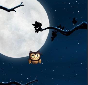 Up Up Owl Ekran Görüntüleri - 5
