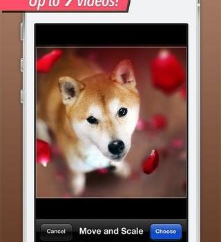 Vid Collage Ekran Görüntüleri - 4