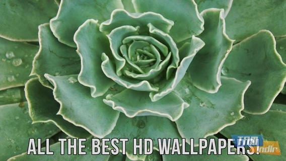 Wallpapers HD Ekran Görüntüleri - 3