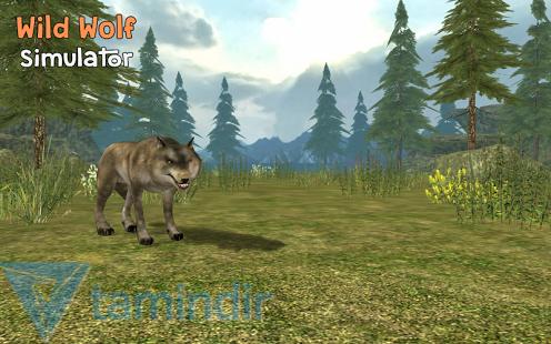 Wild Wolf Simulator 3D Ekran Görüntüleri - 3
