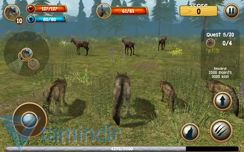 Wild Wolf Simulator 3D Ekran Görüntüleri - 1