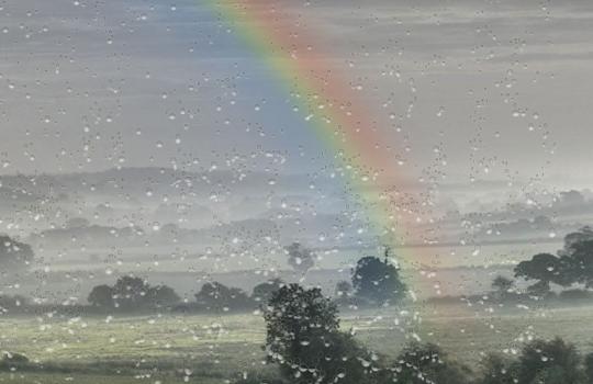 Yağmur Damlası Duvar Kağıdı Ekran Görüntüleri - 5