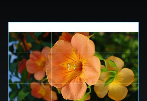 Cellograf Fotoğraf Baskı Ekran Görüntüleri - 1