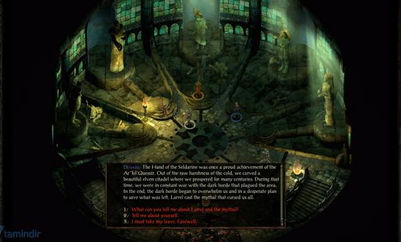 Icewind Dale: Enhanced Edition Ekran Görüntüleri - 6