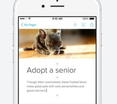 Adobe Spark Page Ekran Görüntüleri - 2