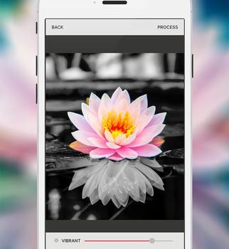 Bitpoem Ekran Görüntüleri - 5