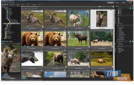 ACDSee Pro Ekran Görüntüleri - 4