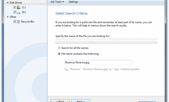 Auslogics File Recovery Ekran Görüntüleri - 2