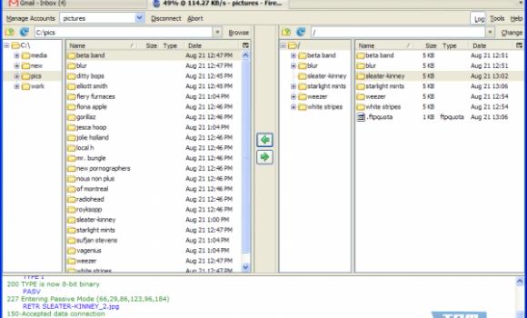 FireFTP Ekran Görüntüleri - 1