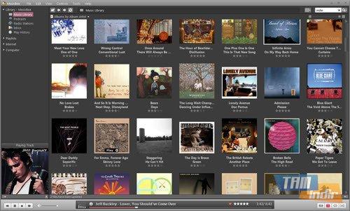 MusicBee Ekran Görüntüleri - 3