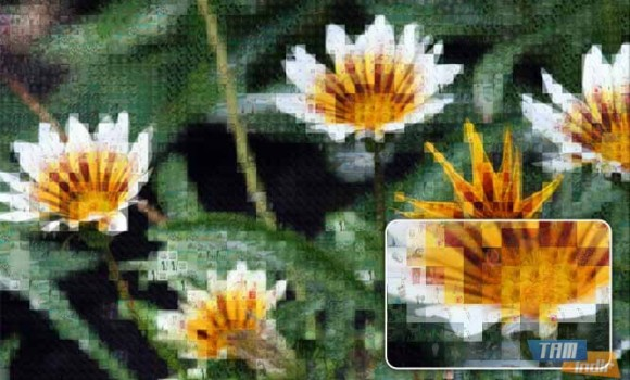 Animosaix Ekran Görüntüleri - 3