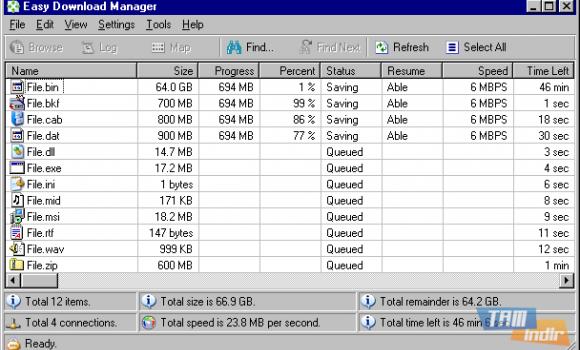 Easy Download Manager Ekran Görüntüleri - 4